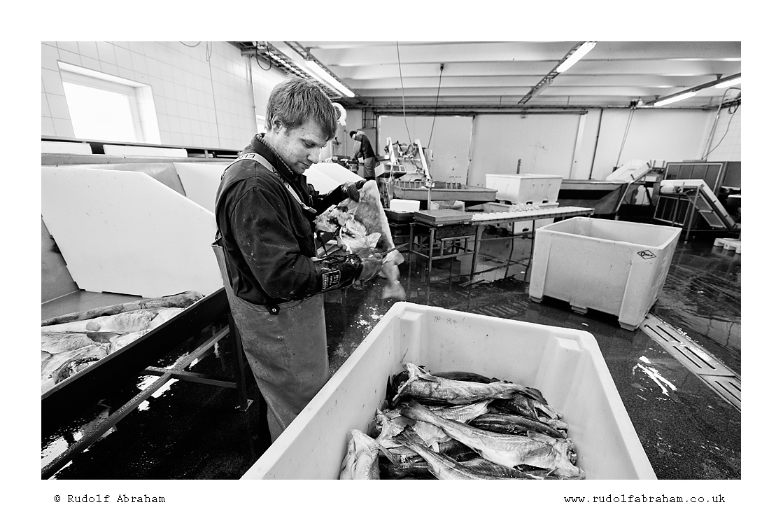 Norway photography Lofoten NOlof_1353b