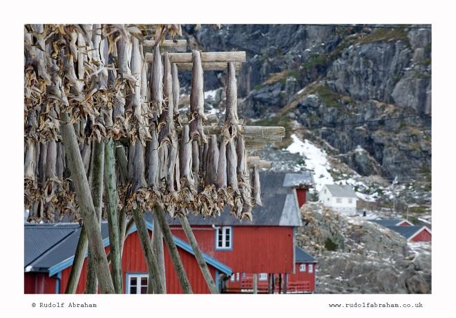 Norway travel writer photographer NOlof_1508