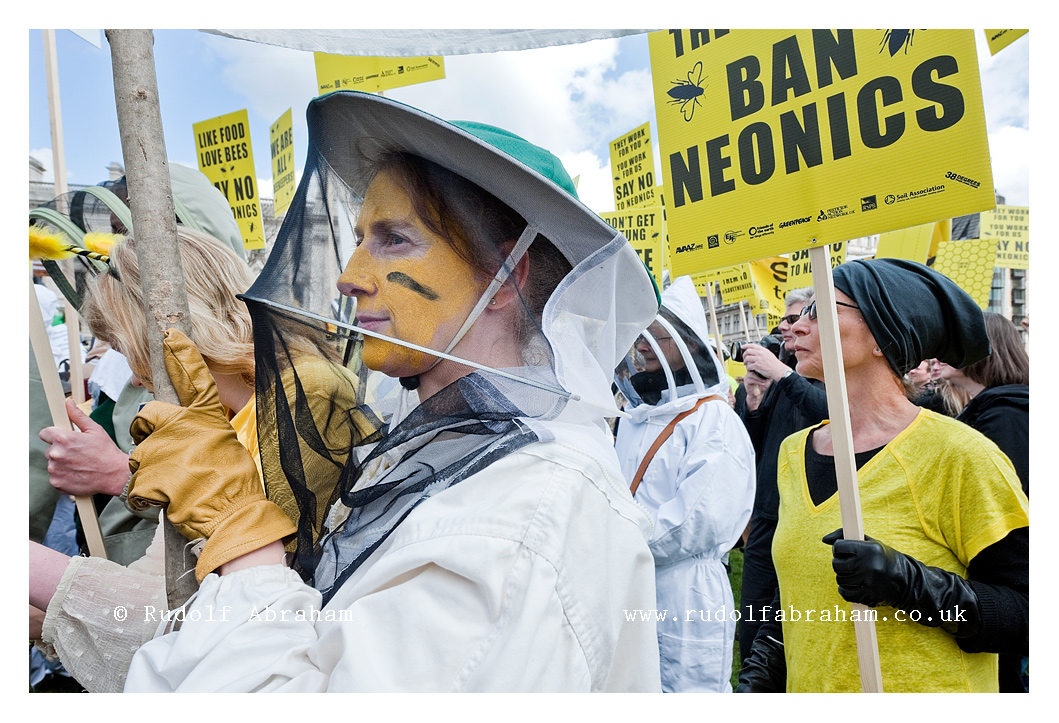 march of the beekeepers neonicotinoid pesticides protest London photographer 20130426_0189a