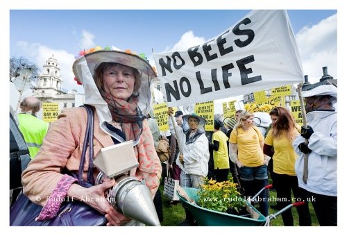 march of the beekeepers neonicotinoid pesticides protest London photographer 20130426_0200a