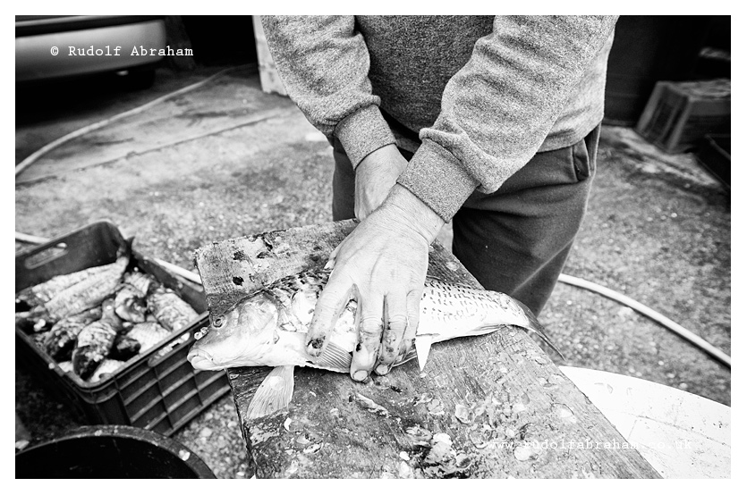 Montenegro Lake Skadar photography photojournalism food travel Rudolf Abraham